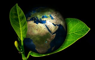 earth with green plant
