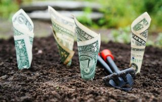 money, growing, dirt, shovel