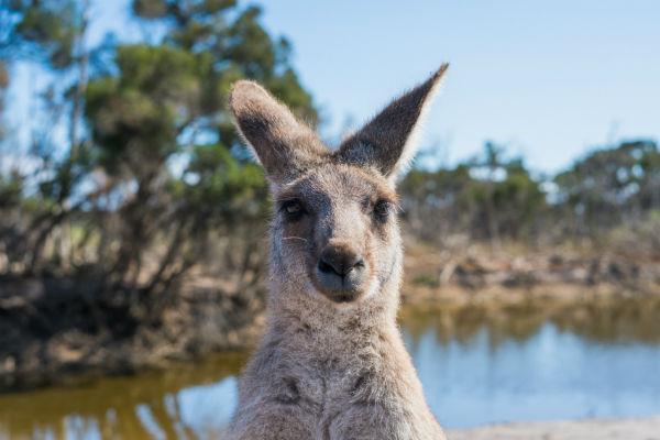 Australia travel destinations