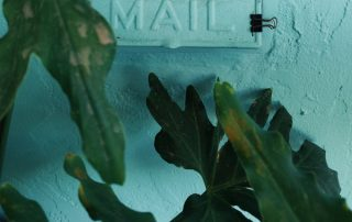 mail, letters