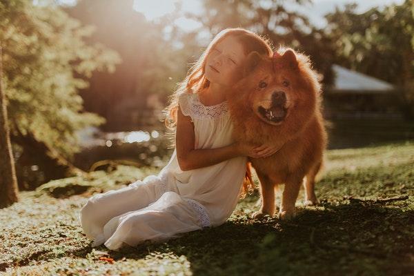 pets dogs kids