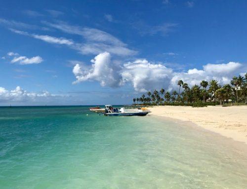 Aruba: 'Honeymoon First' here to escape wedding postponement stress